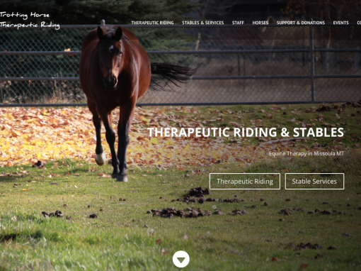 Trotting Horse Therapeutic Riding